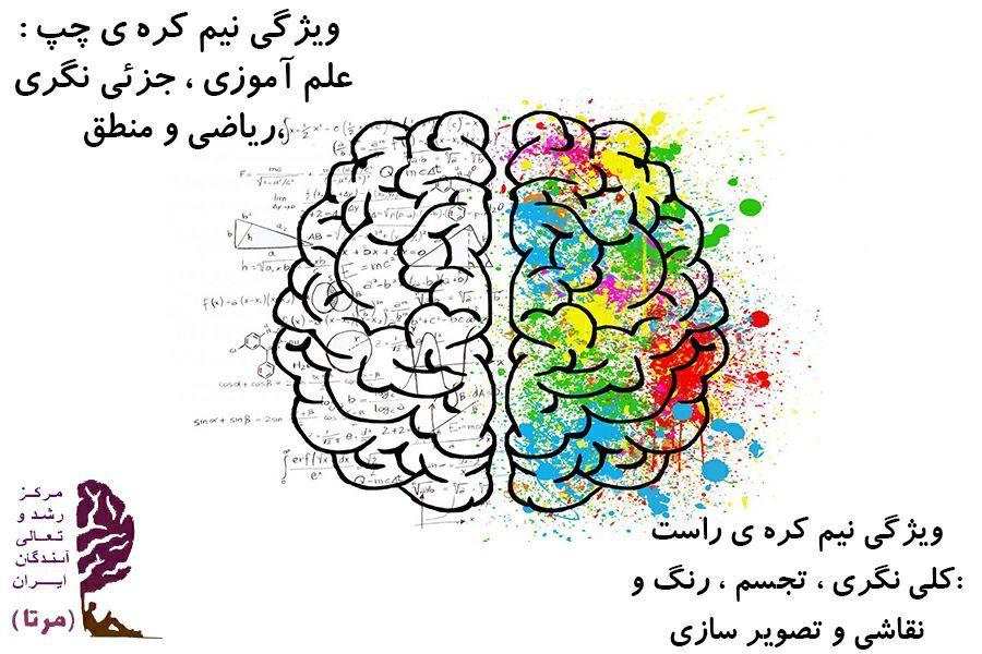 نقش و وظایف نیمکره های مغز