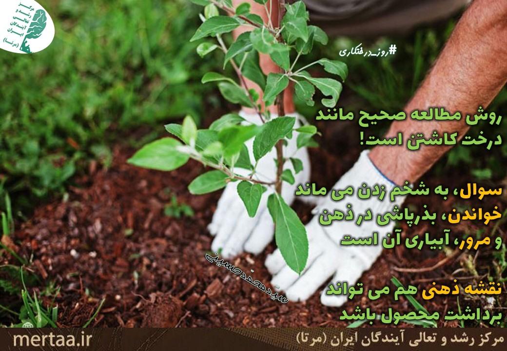 درس خواندنِ درست، مانند کاشت درخت است