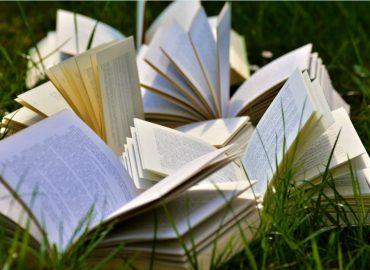 انواع رمان چیست چرا باید رمان خواند