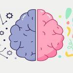 تقویت نیمکره های مغز